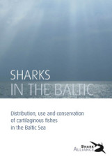 Sharks_in_the_Baltic_Sea_th
