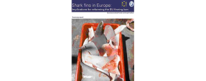 European Elasmobranch Association