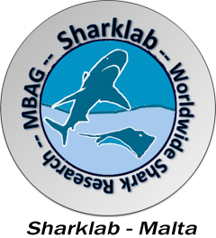 cropped-cropped-Sharklab-Malta-NEW-HR-logo-030112-1