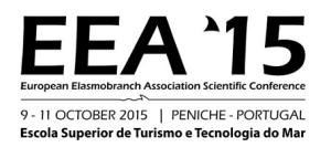 EEA2015_logo_small