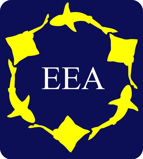 EEA Meeting 2020