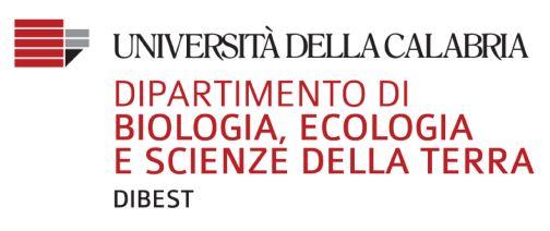 Logo_University of Calabria